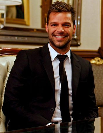 ricky martin meet and greet 2013